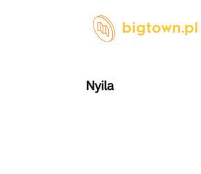 Montaż komponentów - Nyila